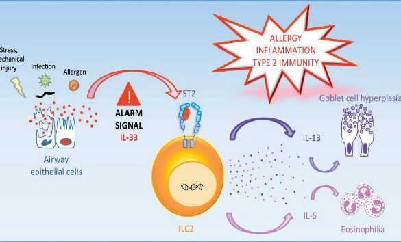 Rhinovirus Infections ATP and IL-33