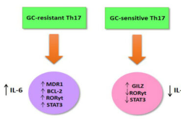 Th17 Cells Glucocorticoid Resistance