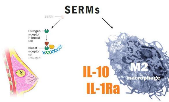SERMs inducing M2-macrophage shift