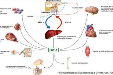 children GH deficiency susceptible pneumococcal disease