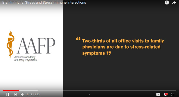 BrainImmune Short Video about Stress
