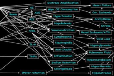 Dyshomeostasis and COVID-19