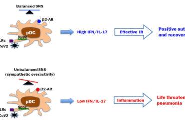 beta-adrenoceptor Upregulation IL-17 Immunopathology COVID-19
