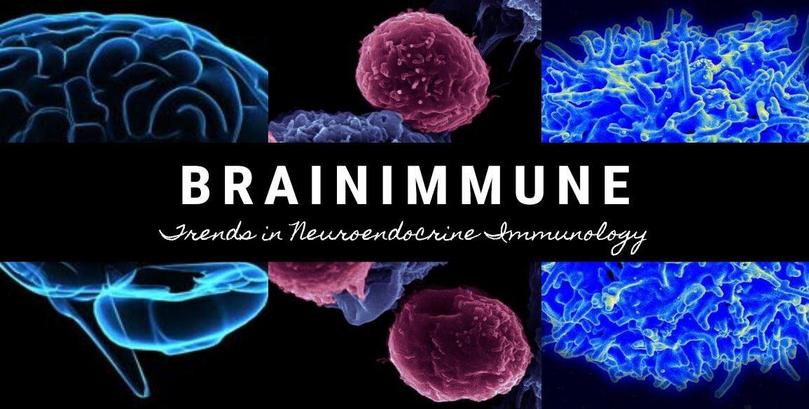 BrainImmune Cover