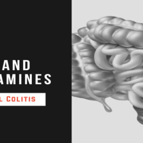 stress catecholamines experimental colitis