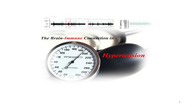 Brain-Splenic Nerve Axis Hypertension