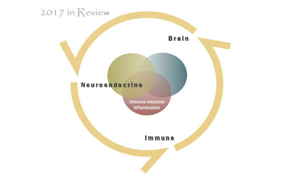 2017 in Review neuroendocrineimmunology cover