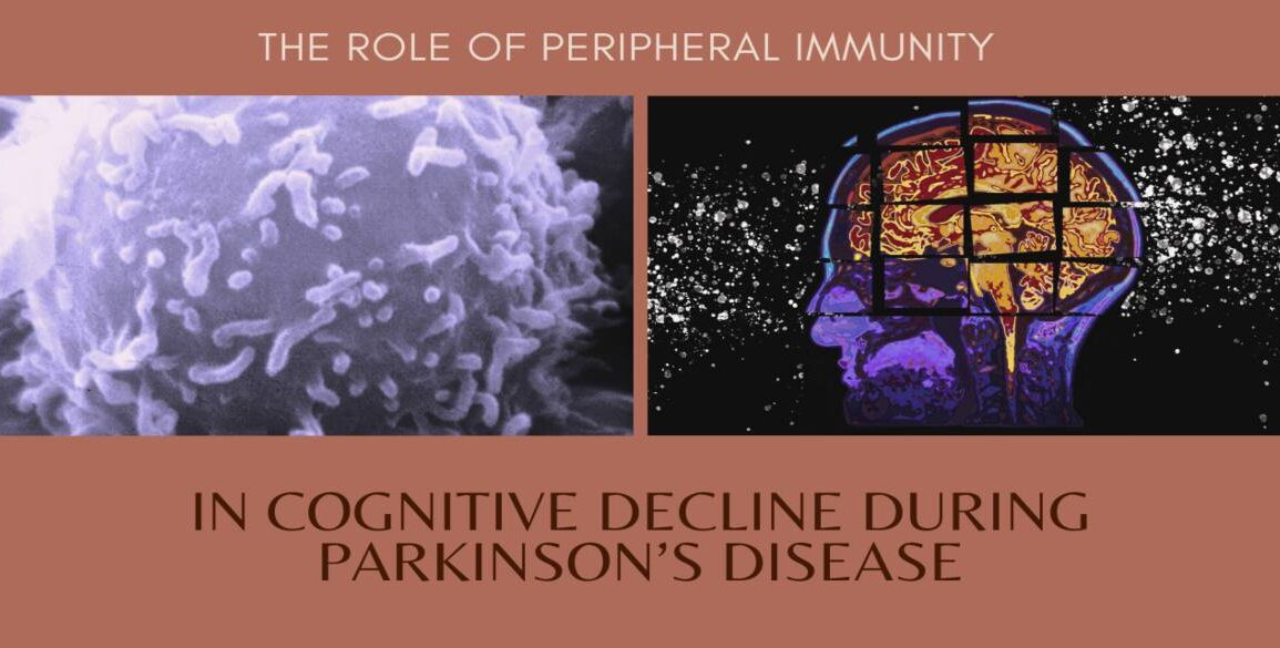 Role of Peripheral Immunity in Cognitive Decline During Parkinson's Disease