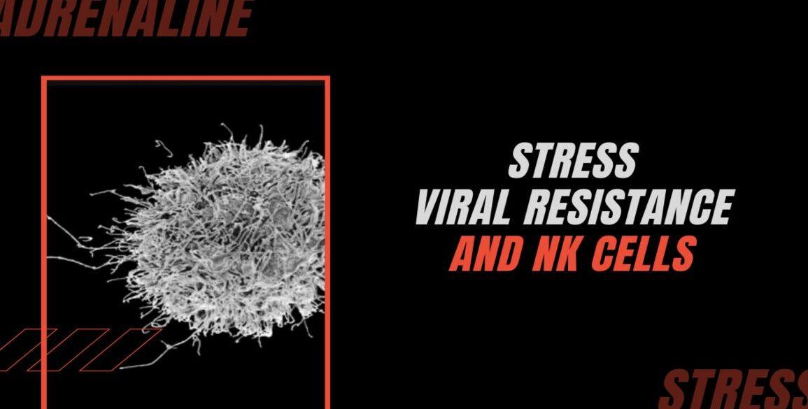 Host Viral Resistance IFN Liver NK Cells